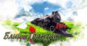 БЛИЦ-ТРАНЗИТ транспортно - экспедиторская компания